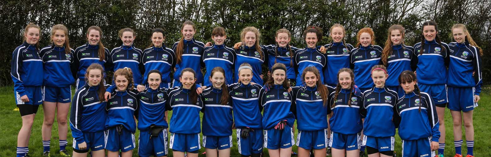 Wizuda sponsors Laois u14 Ladies GAA football team